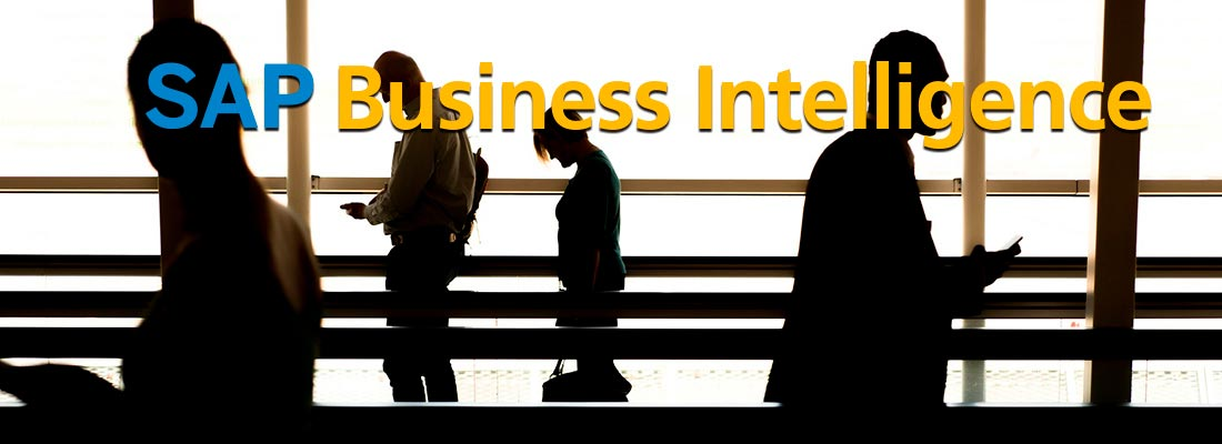 SAP_BUSINESS_2